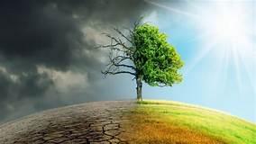 ¿Qué es la mitigación del cambio climático?